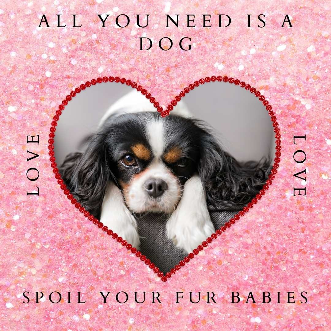 Valentine's Day with Your Dog